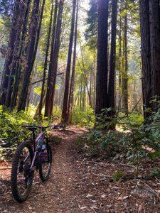 Santa Cruz Biketober